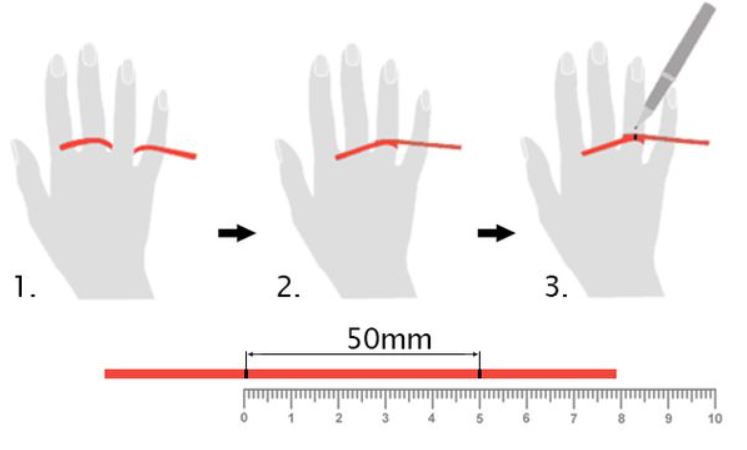 cách đo size nhẫn bằng giấy